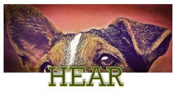 HEAR Image