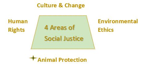 4 areas of Social Justice